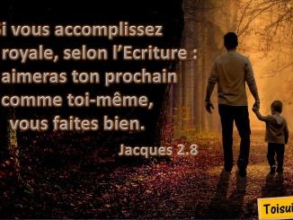 Jacques 2.8
