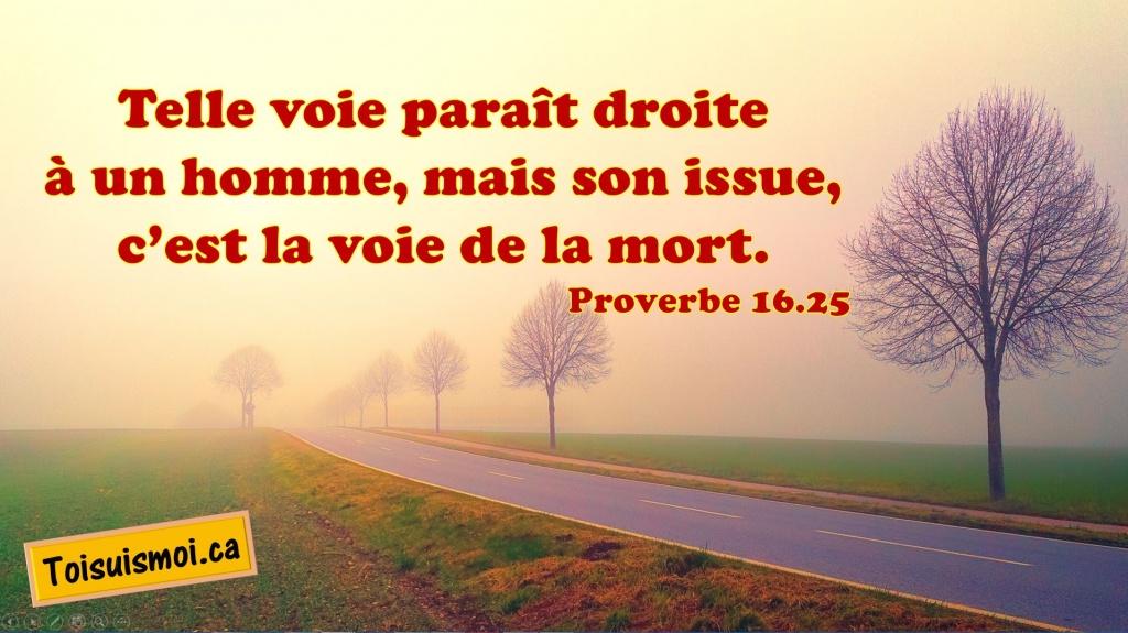 Proverbe 16.25