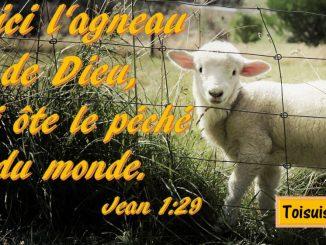 Jean 1:29