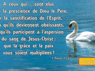 1 Pierre 1.1-2