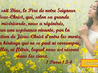 1 Pierre 1.3-4