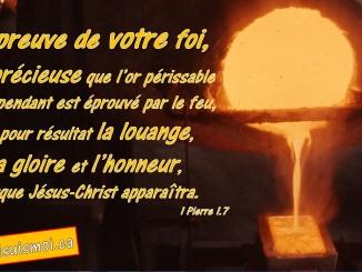 1 Pierre 1.7