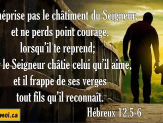 Hébreux 12.5-6
