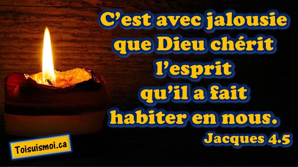 Jacques 4.5