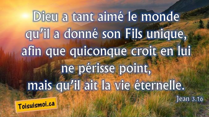 Jean 3.16