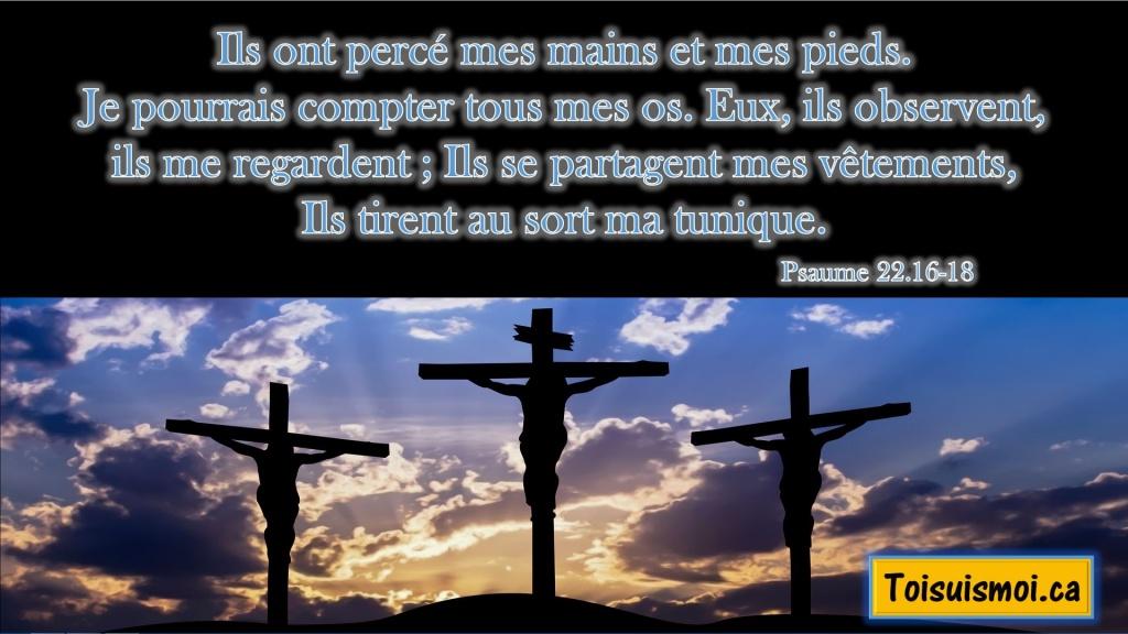 Psaume 22.16-18