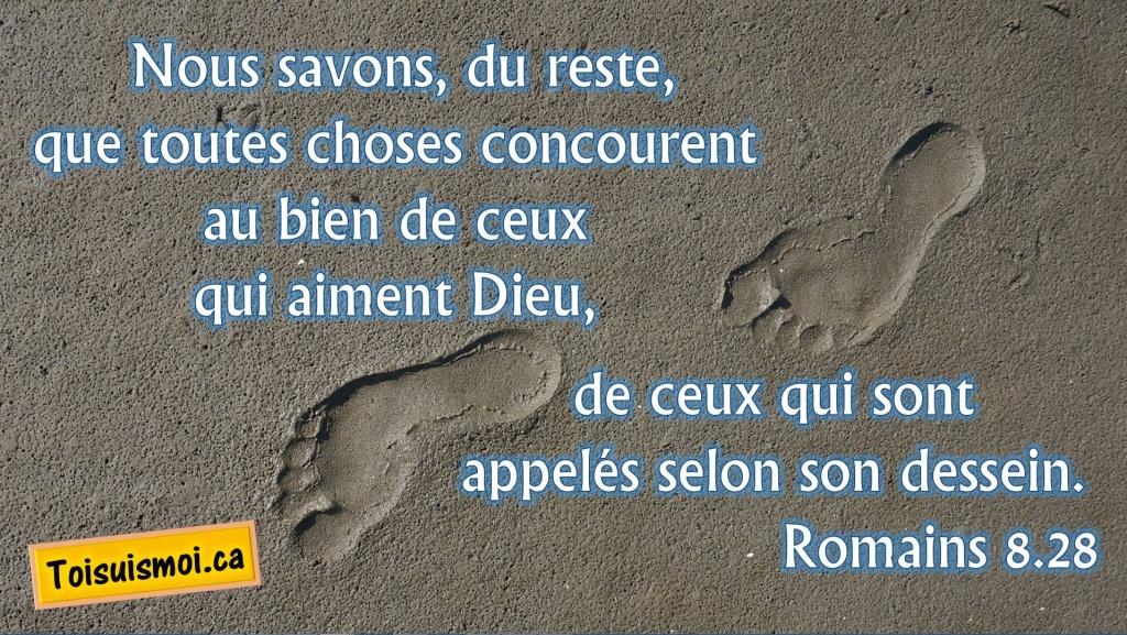 Romains 8.28